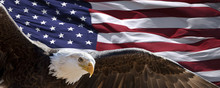 Patriotic Eagle Taking Wing In Front Of US Flag