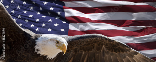 Poster Aigle patriotic eagle taking wing in front of US flag