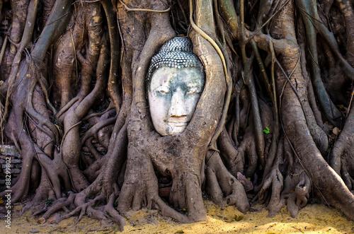 Tuinposter Boeddha buddha head