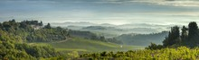 Early Morning Panoramic View Of Misty Hills, Near San Gimignano, Tuscany