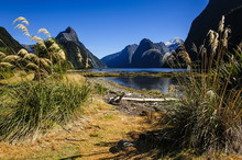 The Steep Cliffs Of Milford Sound, Fiordland National Park, South Island, New Zealand