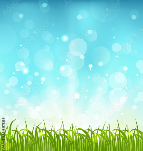 Spoed Foto op Canvas Turkoois Summer nature background with grass