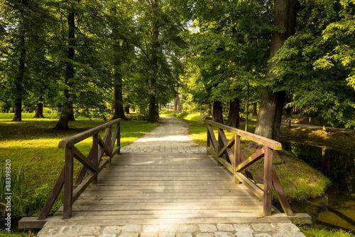 Fototapeta kładka  kladka-park-wroclaw