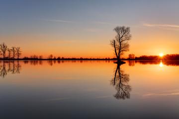 Fototapeta na wymiar Silhouette tree at sunset in lake
