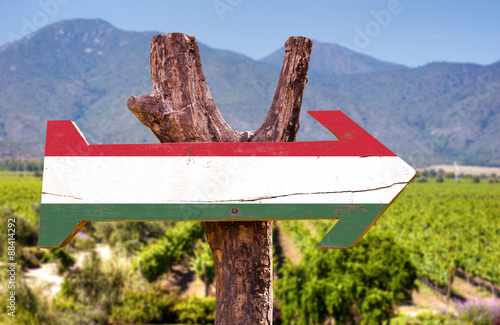 Poster Afrique du Sud Hungary Flag wooden sign with winery background