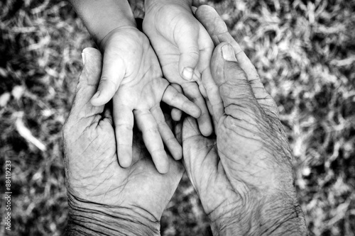 Fotografia  Young and old hands