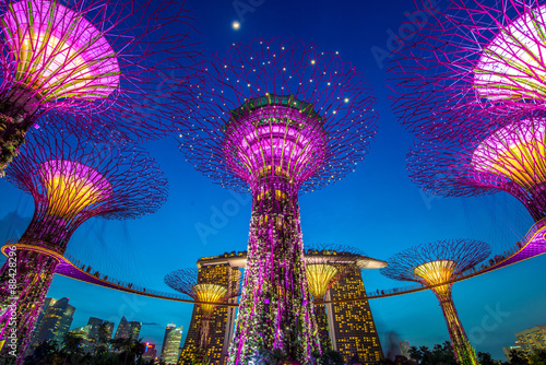 Tuinposter Singapore Supertrees at Gardens by the Bay