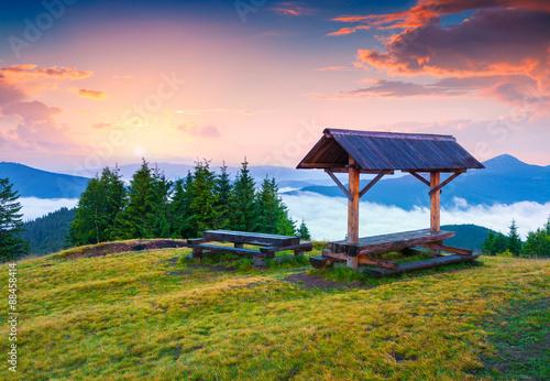 Foto op Aluminium Zalm Colorful summer sunrise in the Carpathian mountains