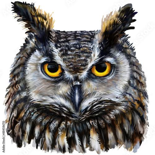 Canvas Prints Owls cartoon eagle owl digital painting / eagle owl head