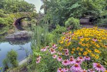 Gapstow Bridge Central Park, N...