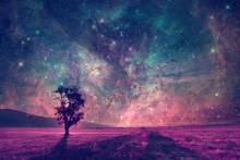Alien Landscape With Alone Tre...