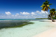 Amazing view of Caribbean beach with white sand and beautiful ex