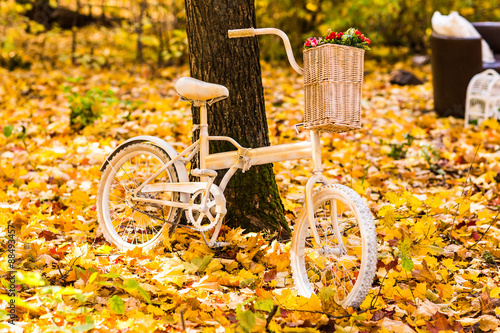Fotobehang Fiets Old and vintage bicycle