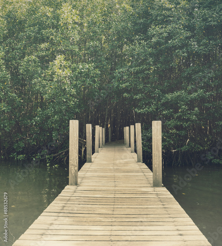 Long wood bridge in mangrove forest, Chanthaburi,Thailand