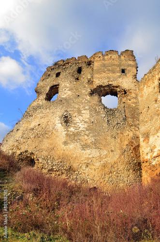Fotobehang Rudnes ruiny zamku