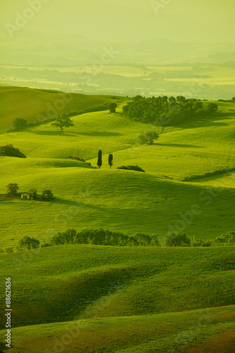 Fotobehang Rijstvelden Green Tuscany hills