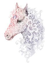 Tattoo, Beautiful Horse Head With A Mane