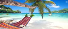 Tropische Urlaubsreise