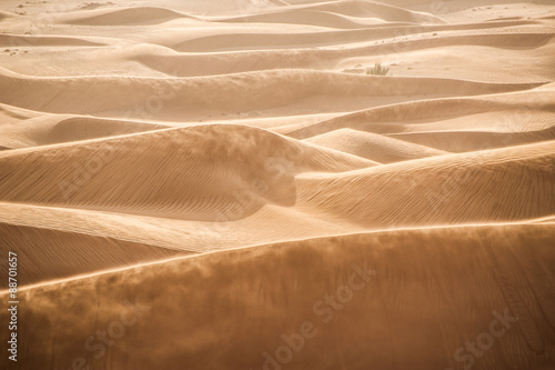 Photo sur Toile Desert de sable Sand dunes in Dubai desert
