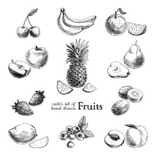 Vector Set Of Hand Drawn Vintage  Fruits And Berries.
