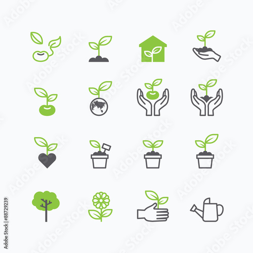 Valokuva  plant and sprout growing icons flat line design vector.