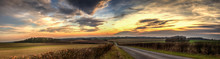 Panoramic Wolds