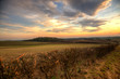 Sunset in wolds