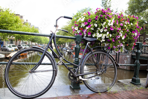 rower-w-amsterdamie