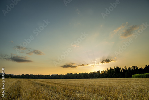 Foto auf Gartenposter Landschappen Panorama View of an Open Field During Sunset