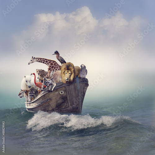 Photo  Animals in a Boat