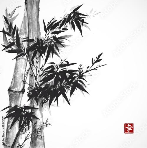 drzewo-bambusowe