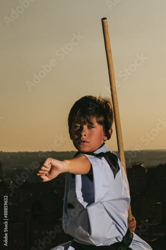 Poster Vechtsport Kid Practising Martial Arts