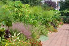 Daniel Stowe Canal Garden In Belmont, North Carolina