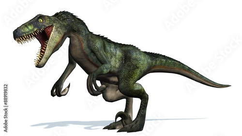Photo  velociraptor dinosaurs - isolated on white background