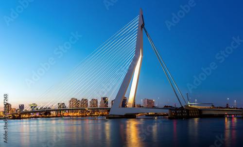 Foto auf Acrylglas Schwan Erasmus bridge Rotterdam panorama