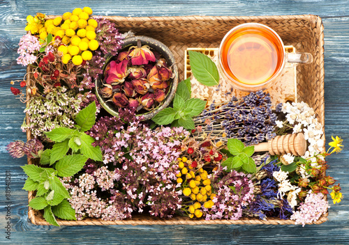 mata magnetyczna Herbal Medicine. herbs and flowers in basket. Top view, horizontal