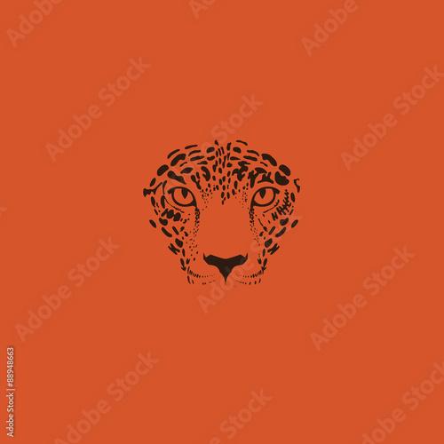 Fotomural Leopard, jaguar