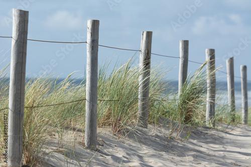 Spoed Foto op Canvas Noordzee Dünen an der Nordsee