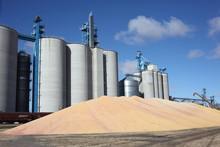 Grain Production Overflow