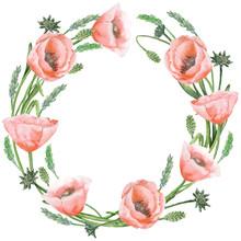 Poppies Wreath