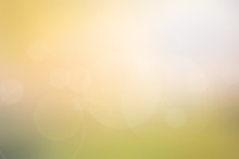 Abstract Light Yellow-green Blurred Background