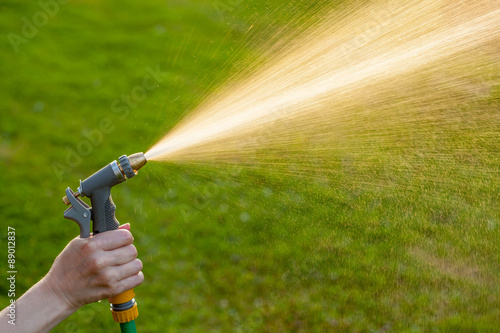 Fotografie, Obraz  Hand holding garden hose with water spray