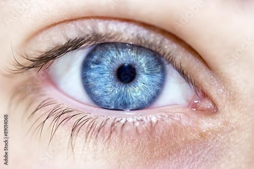 Spoed Foto op Canvas Iris insightful look blue eyes boy