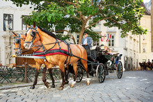 Vienna, Fiaker Ride