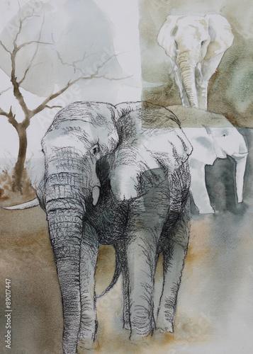 oryginalna-akwarela-kolaz-sloni-na-wolnosci