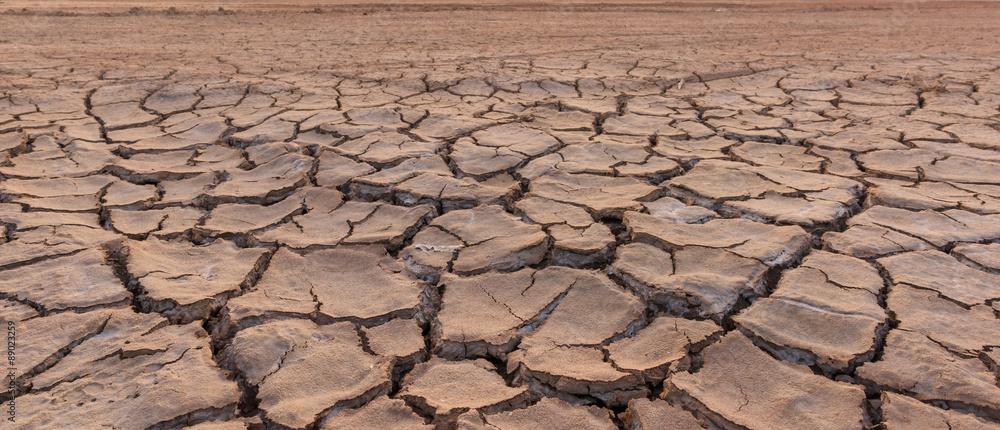 Fototapeta drought land