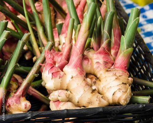 Fototapeta Fresh ginger root spice at the market obraz