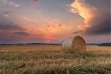 Bele siana na polu podczas zachodu słońca