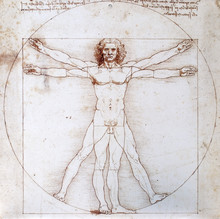 Leonardo Da Vinci - Proportion...