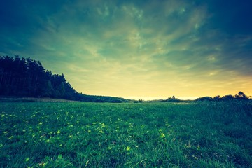 Obraz Vintage photo of beautiful landscape with morning meadow